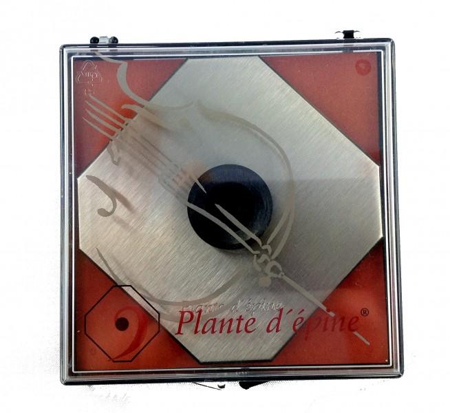 Plante d épine Parkettschoner für Cello